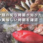 魚介類の旬な時期が知りたい!魚の美味しい時期を確認